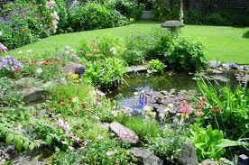 A Really Wild Garden