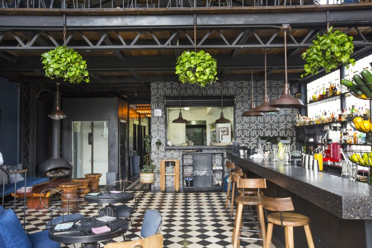 wallpaper and hanging ferns at romita restaurant in mexico city by mimi giboin for gardenista